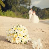 Wedding Bouquet Frangipani