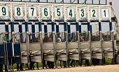 Horse Race Start.