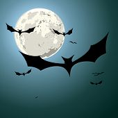 detailed illustration of bats in front of a full moon, eps10 vector