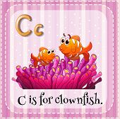 Illustration of an alphabet C is for clownfish