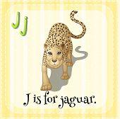 Illustration of an alphabet J is for  jaguar