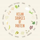 Постер, плакат: Vegan sources of protein