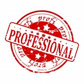 Professional - red stamp