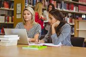 Focused students on laptop with classmates behind them in library