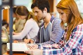 foto of classmates  - Four focused classmates working together in library - JPG