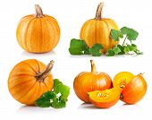 Set ripe pumpkin with green leaf. Isolated on white background