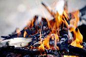 stock photo of bonfire  - Bonfire - JPG