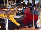 foto of merry-go-round  - Merry Go Round photo of the various animal seats - JPG