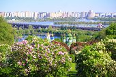 stock photo of kiev  - lilacs blooming in kiev - JPG