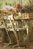 pic of lawn chair  - Bench chair in a garden at the park - JPG