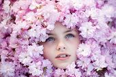 picture of pink eyes  - Face of little girl with opened blue eyes among pink flowers of japanese cherry bloom copyspase horizontal picture  - JPG