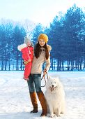 image of children walking  - Happy mother and child walking with white Samoyed dog in winter day - JPG