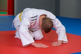stock photo of shotokan  - Bowing before judo match - JPG