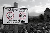 picture of pooper  - warning sign for all dog owners to scoop the poop in the country - JPG