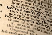 The Word Homosexual