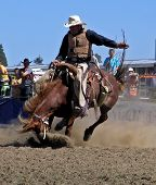 foto of bronco  - a cowboy riding a bucking bronco - JPG
