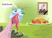Funny Turkey