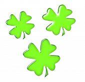 Three Four-Leaf Clovers
