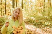 Collecting Forest Flowers. Blonde Enjoy Relax Forest. Autumn Bouquet. Warm Autumn. Girl With Flowers poster