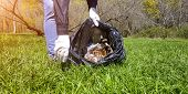 Scavenge. Close-up Hands Collect Garbage In A Package In The Park poster