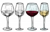 Hand Drawn Glasses With Red And White Wine Vector Illustration. Alcohol White And Red Drink Wine, Sk poster