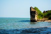 Moss And Tree Covered Stone Wall Ending In Ocean Waves From Diu Fort In Gujarat India poster