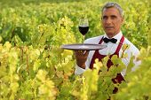 Waiter in field with glass of wine