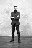 Be My Fashionista. Business Success. Mature Businessman. Bearded Man Hipster In Jacket. Male Fashion poster