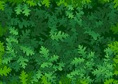 Oak green leaves seamless texture