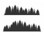 Forest Fir Trees Silhouettes, Coniferous Spruce Horizontal Seamless Pattern, Black Evergreen Woods V poster