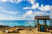 Bar Tropical al aire libre y Souvenirs