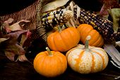 image of cornicopia  - Basket filled with autumnal thanksgiving colors and items - JPG