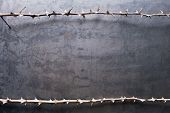 Border From Prickly Dry Branches On Metal Texture Background