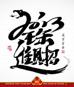 image of chinese new year 2013  - Vector Snake Calligraphy - JPG