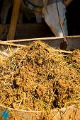 picture of excrement  - Manure from cattle excrement compost to reduce the cost of cultivation - JPG