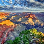 Morgenlicht am Grand canyon