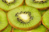 Scheiben Kiwi Frucht Hintergrund