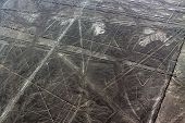 stock photo of geoglyph  - Spider and Trapezoids. The Nazca Lines are a series of geoglyphs located in the Nazca Desert. Peru.