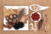 Chinese herbal medicine selection over bamboo background.