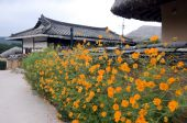 pic of andong  - Part of the Hahoe Folk village in Southkorea - JPG