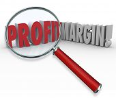 Profit Margin Words Magnifying Glass Searching Big Earnings Income