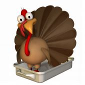 Toon Turkey Roaster
