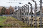 Auschwitz Museum