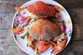picture of cooked crab  - Steam Sea crab and ready to eat