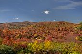 Graveyard Fields On Blue Ridge Parkway, North Carolina, Usa In Autumn Color