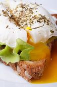 stock photo of benediction  - Eggs Benedict with bread on a plate close up vertical - JPG