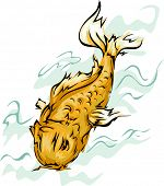 Illustration Featuring a Golden Koi Fish