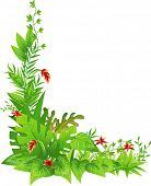 Corner Border Illustration Featuring Jungle Plants