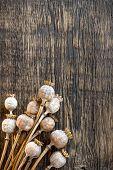 foto of opiate  - Poppy heads on a vintage wooden table - JPG