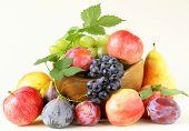 assortment autumn harvest fruit (grapes, figs, apples, plums)